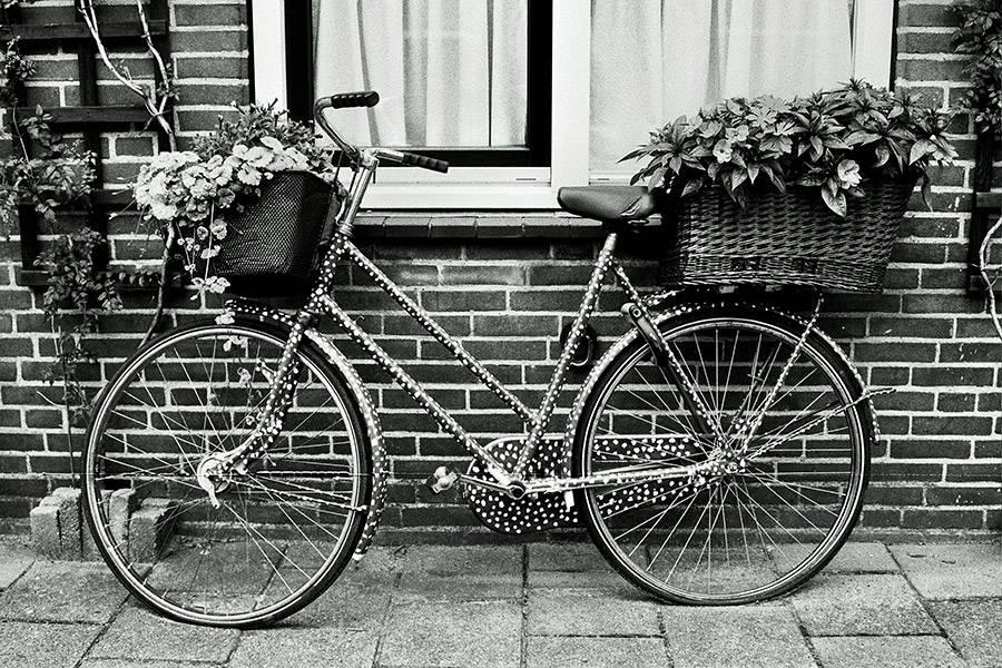 ...La bicyclette... Olivere Inđić